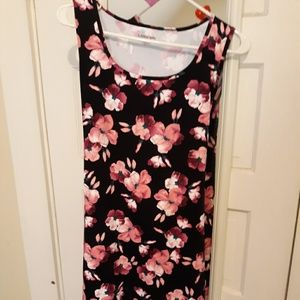 Lands End Sun Dress